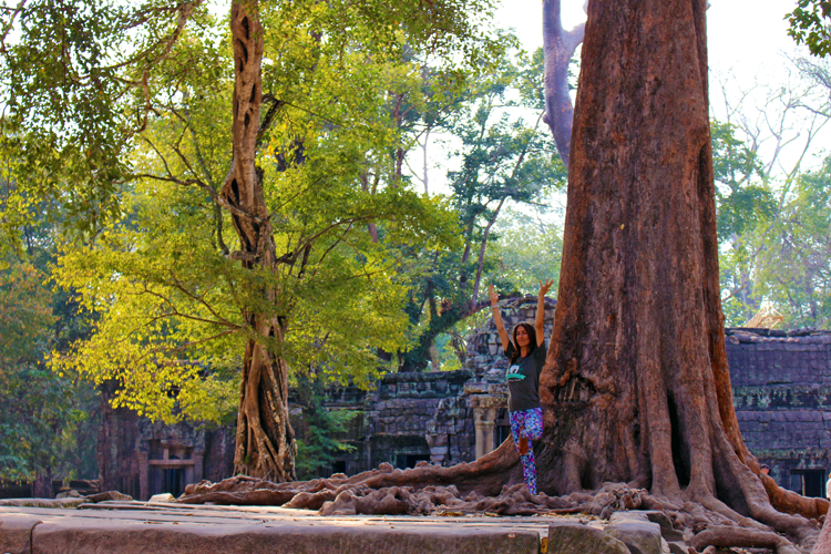 Tree Pose and a huge tree outside of one of the temples of Angkor Wat.