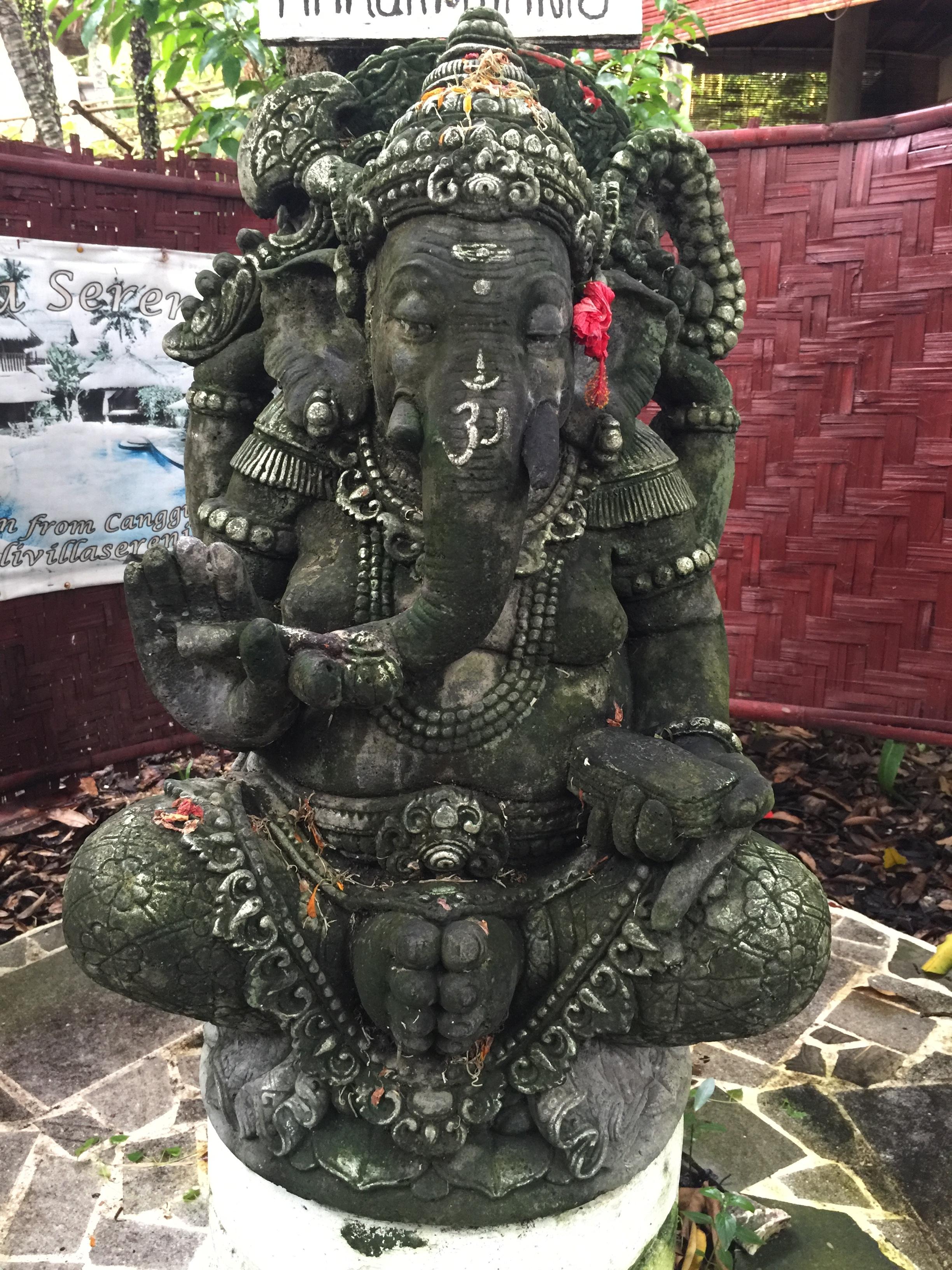 Ganesh at Serenity Eco Guesthouse.