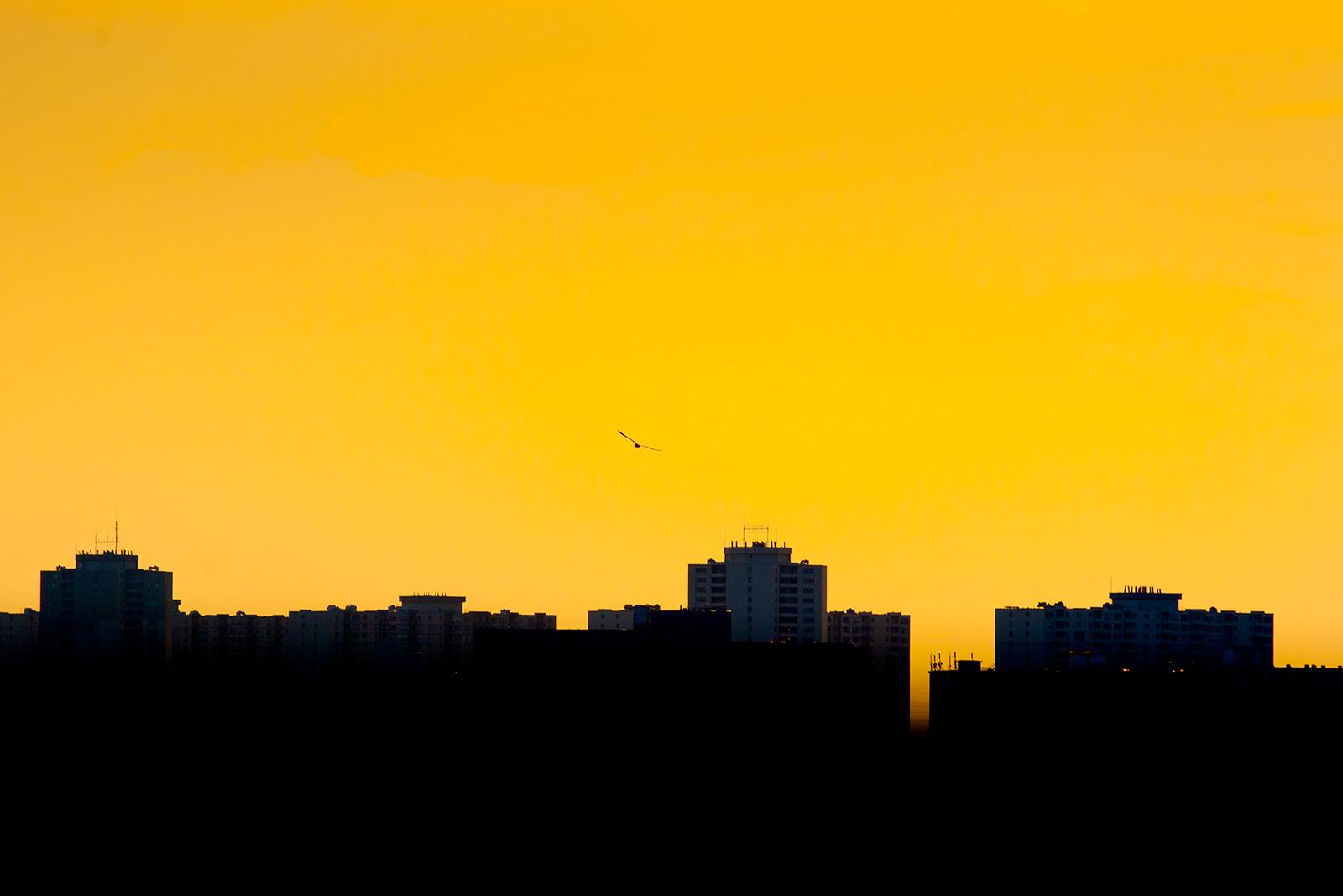 20110710-dixon_sunset01.jpg