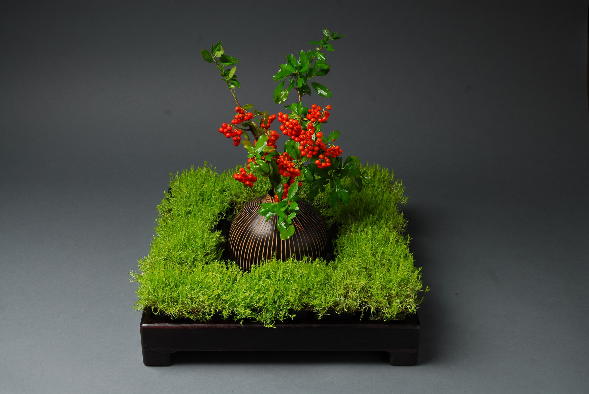 Black square wood vase filled with grass and orange flowers in the center