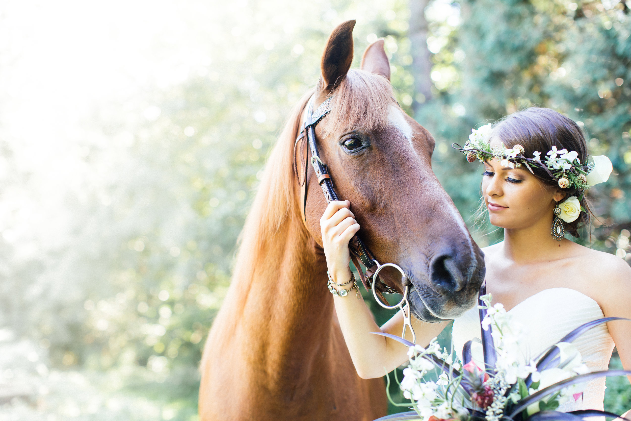 Horse and Bride Minneapolis Wedding Photography