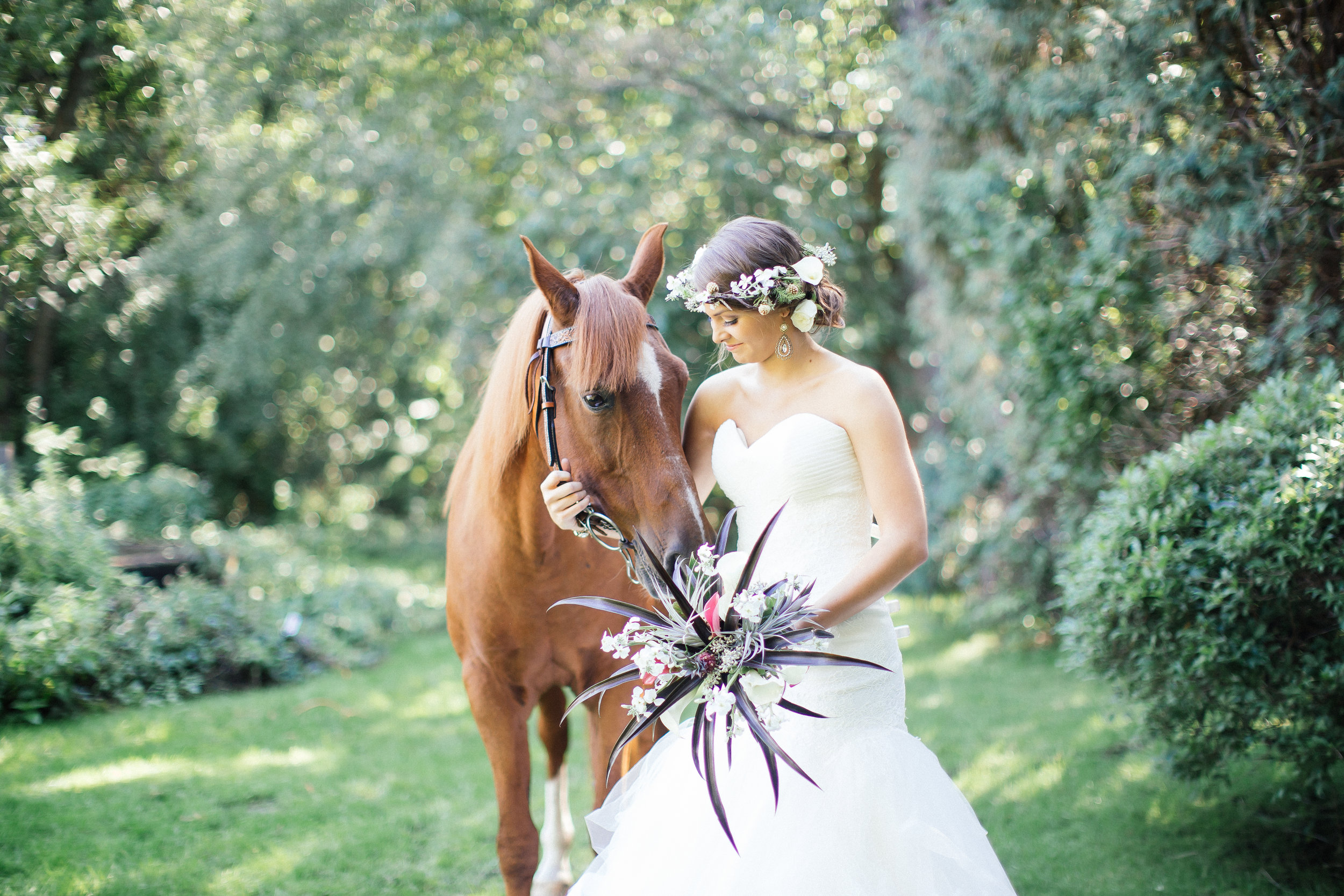 Horse and Bride wedding photography