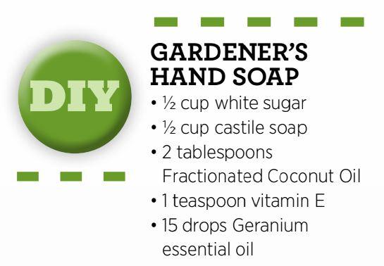 Gardeners-Hand-Soap.jpg
