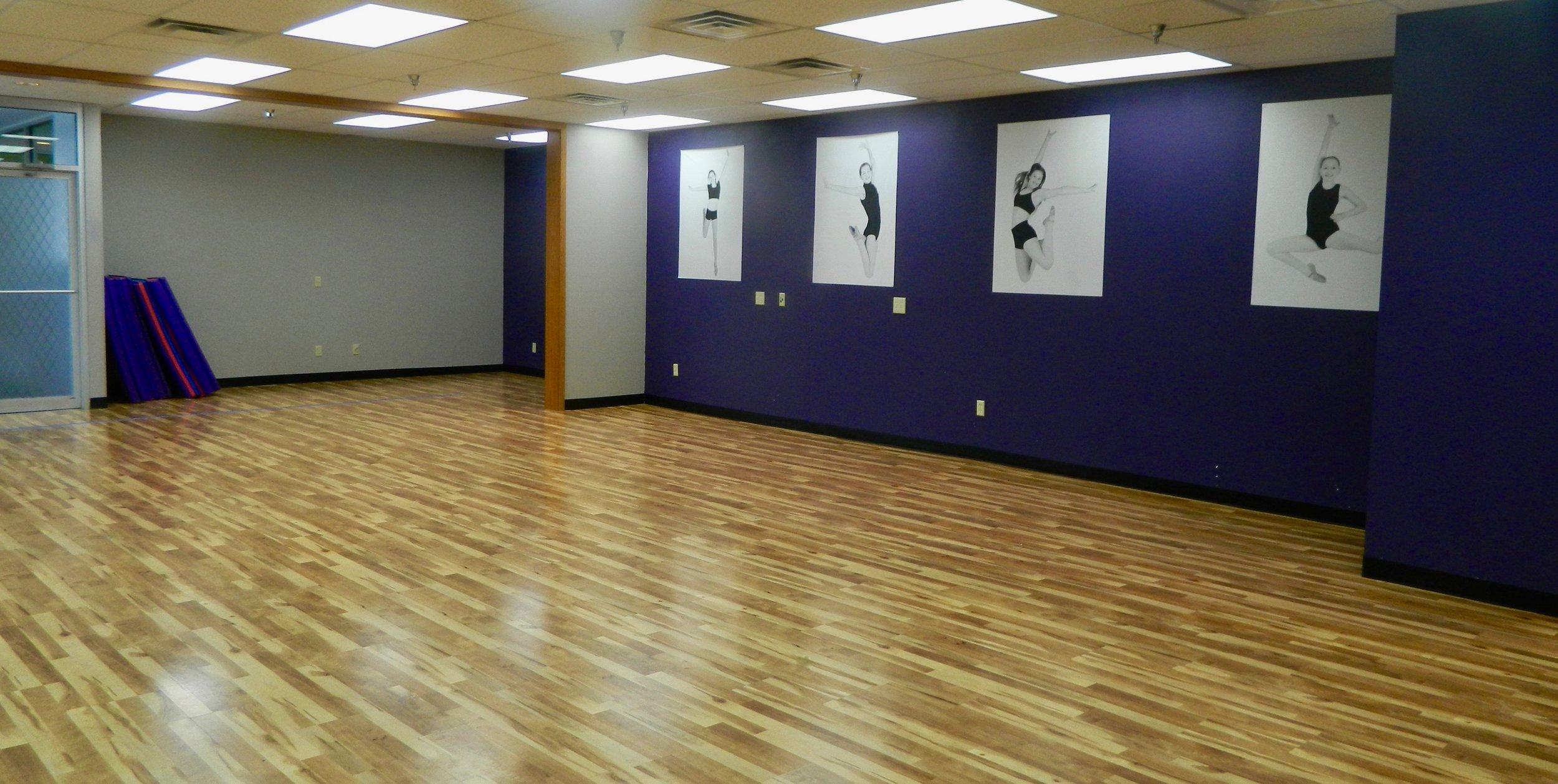 UPDS | Dance Studio Remodel