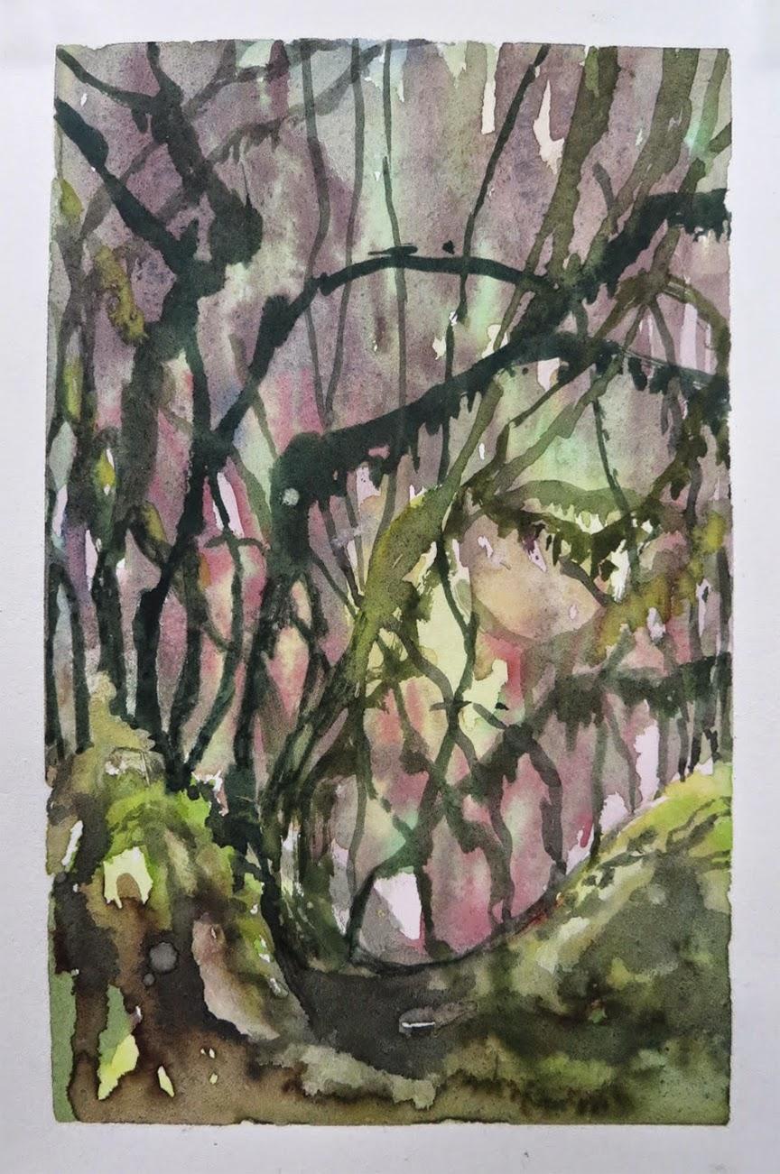 Untitled (Mosses)