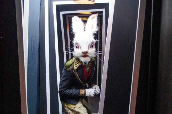 rabbit-600x398.jpeg