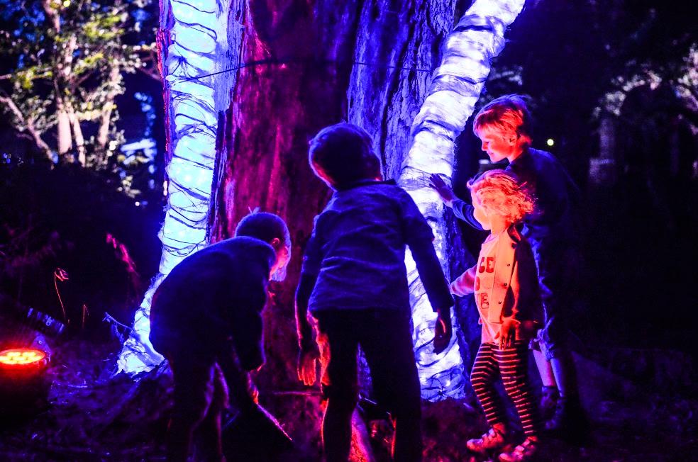 The Heart Tree -Photographs Rah Petherbridge 2015