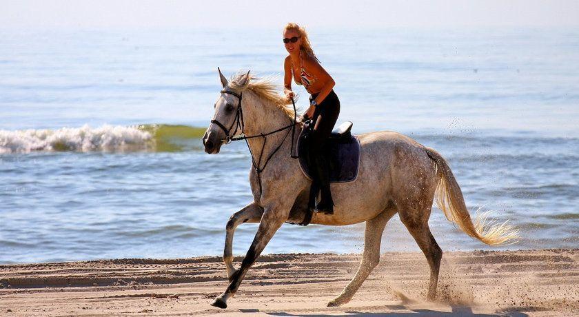 rsz_horseback-riding-punta-cana.jpg