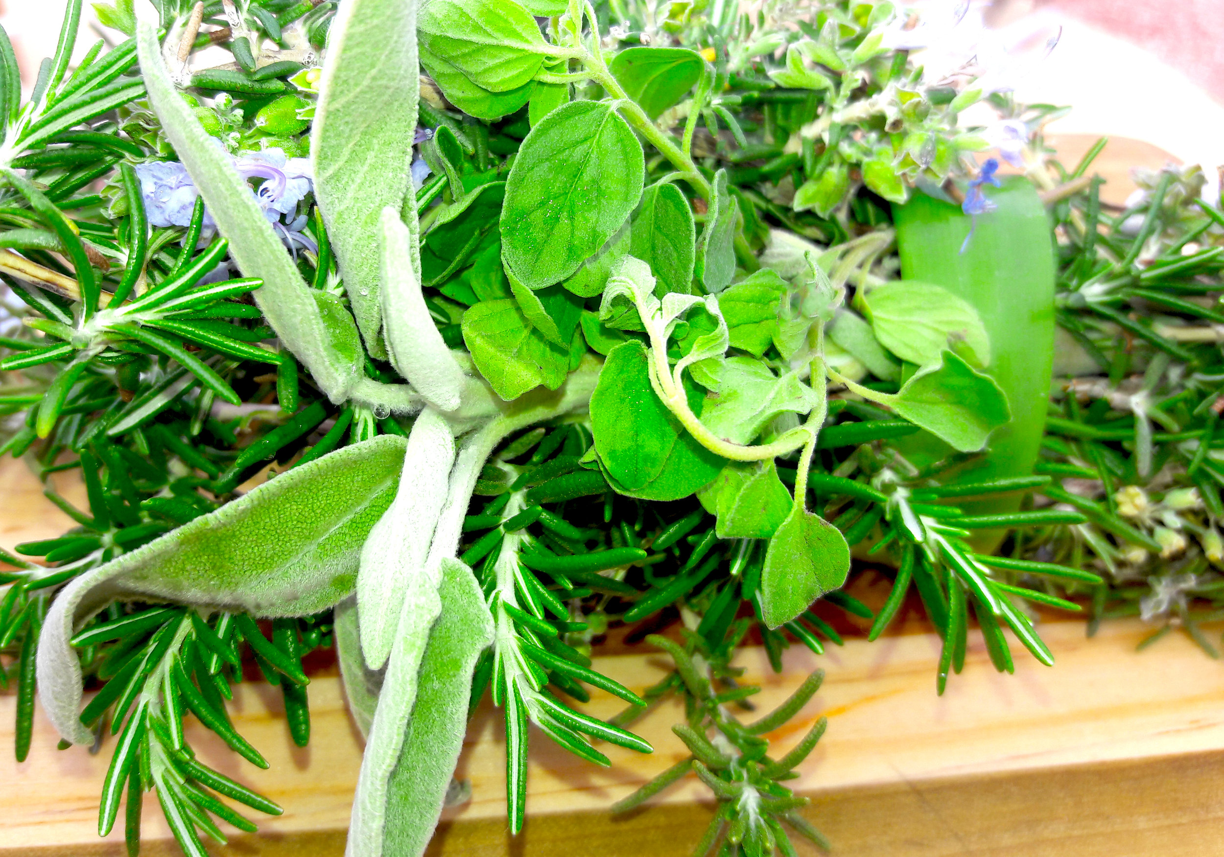 tyme, rosemary, sage Bundle.jpg