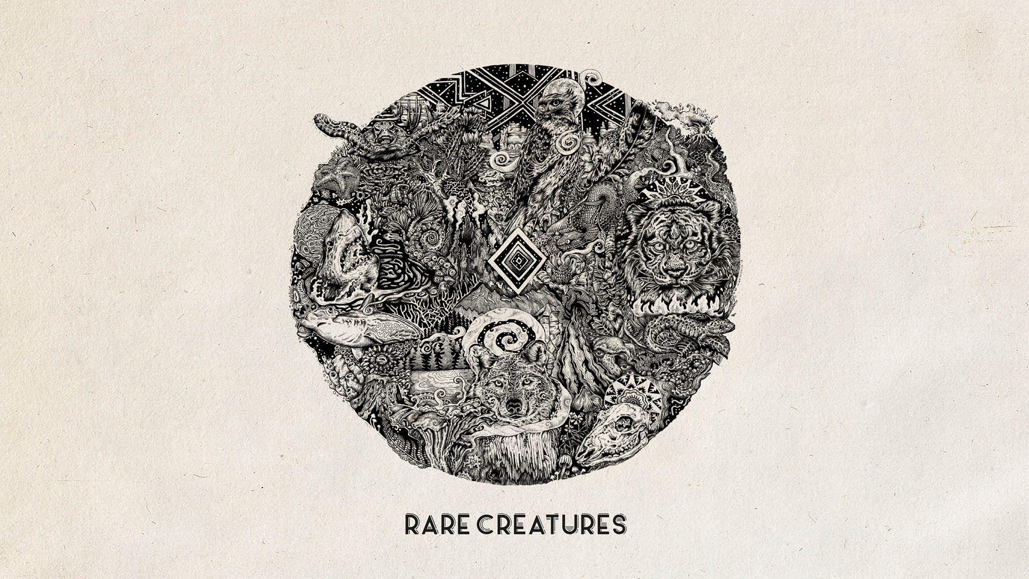rare creatures album cover.jpg