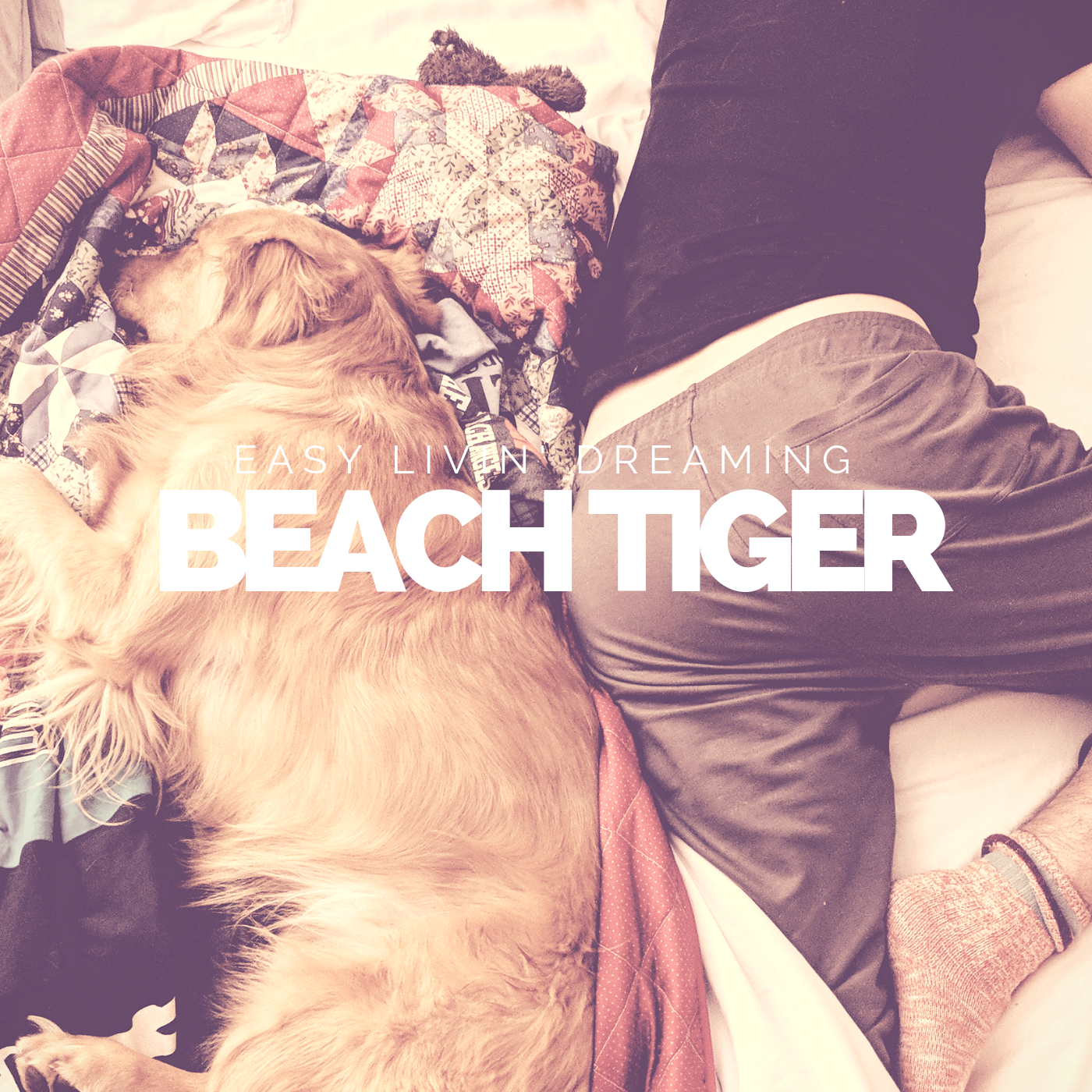 "Beach Tiger - ""Easy Livin' Dreaming"" EP Mixing"