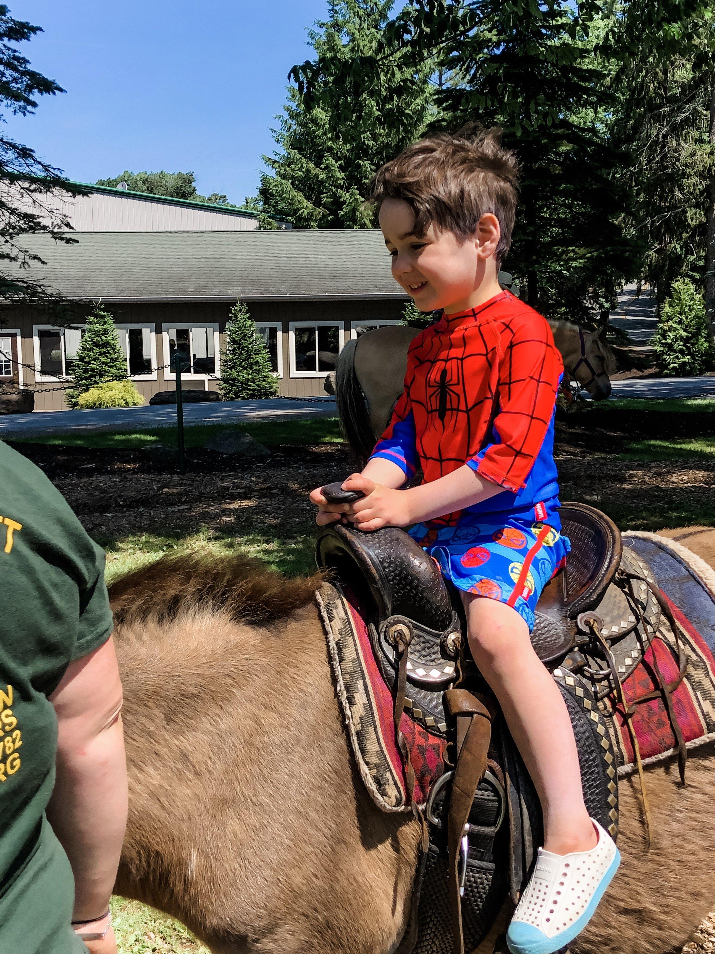 Miriam Cohen Woodloch family  travel  (pony petting zoo 1).jpg