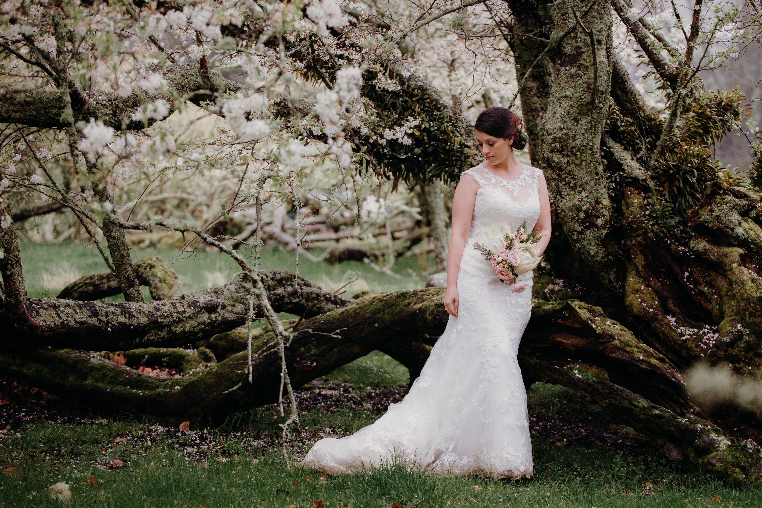 Rotorua wedding photographer12.jpg