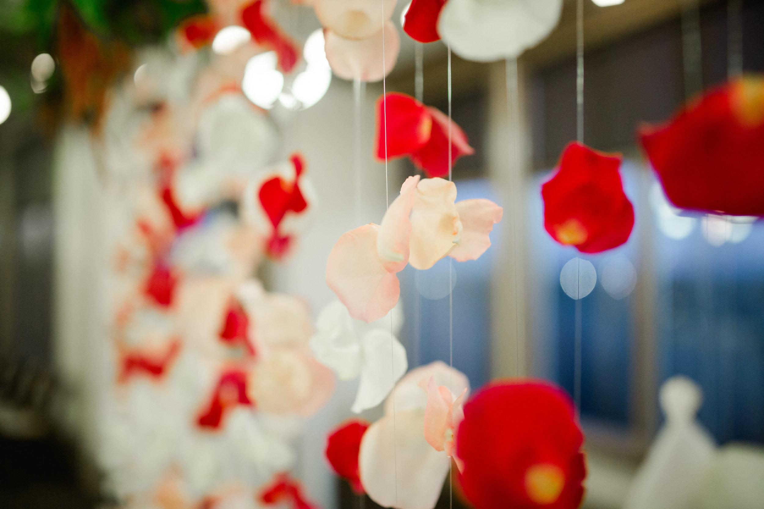Mckenna Spencer Wedding-Reception-0017.jpg