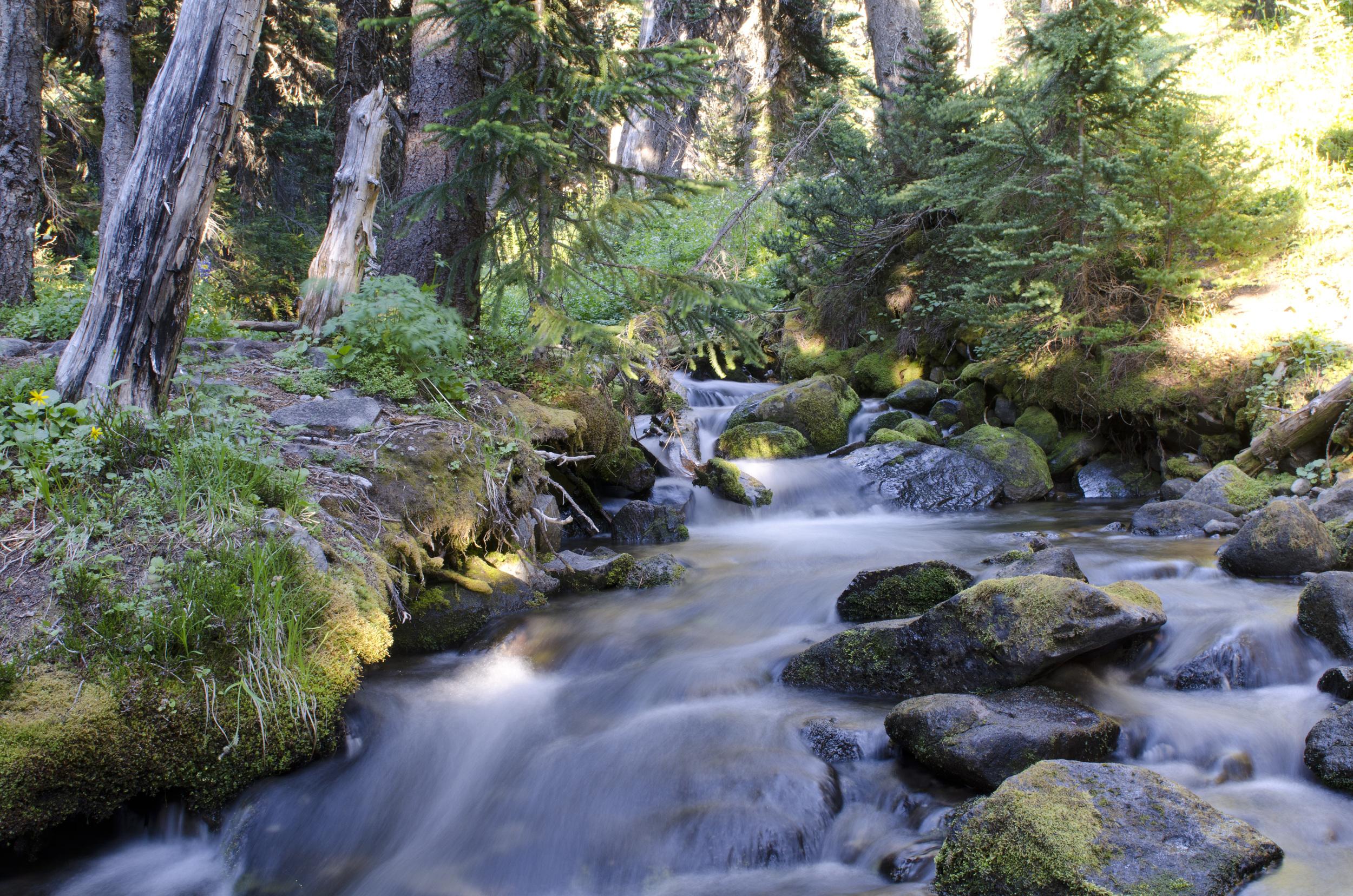 Lovely Granite Creek