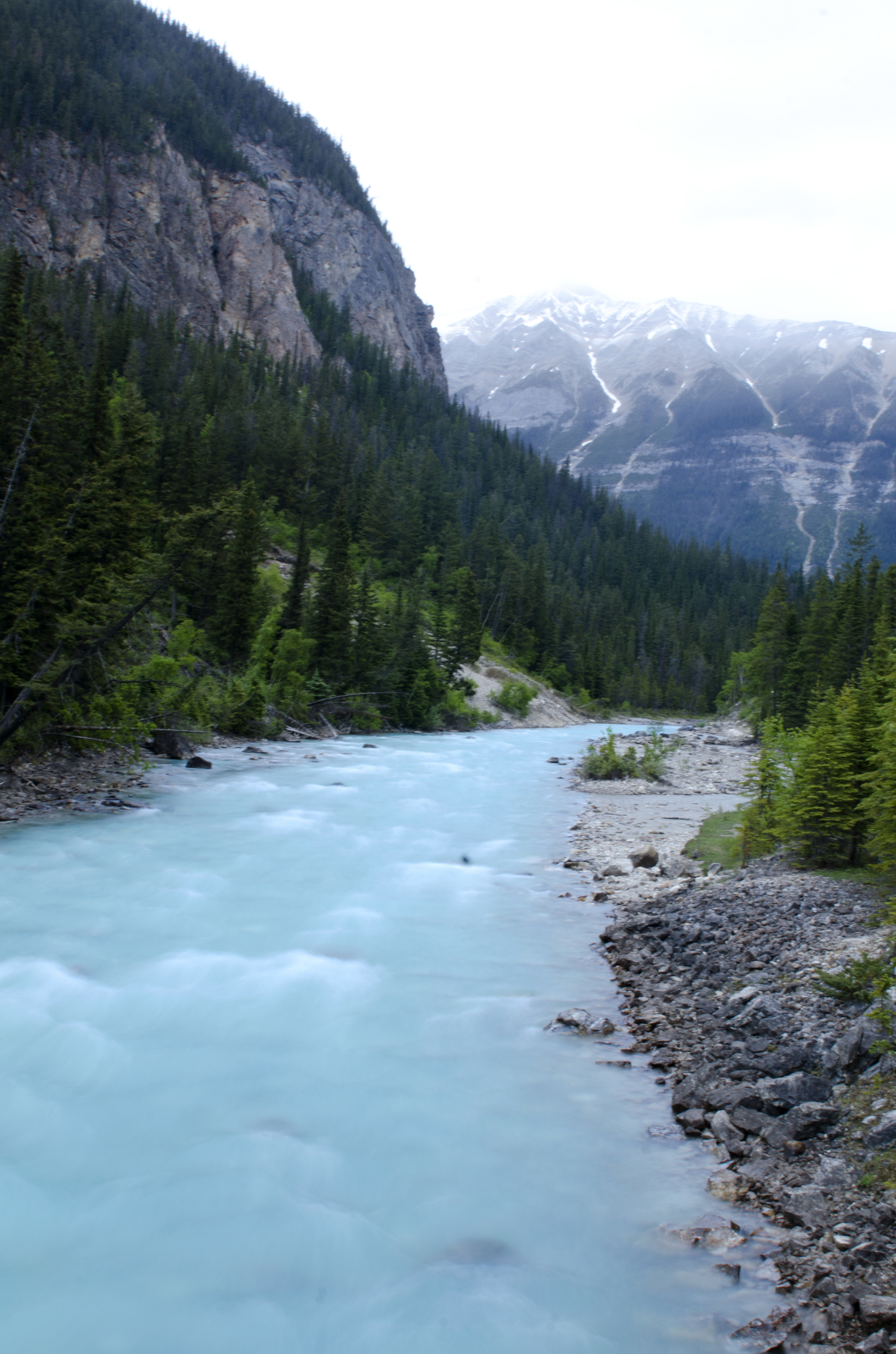 The lovely river beside the Kicking Horse campground
