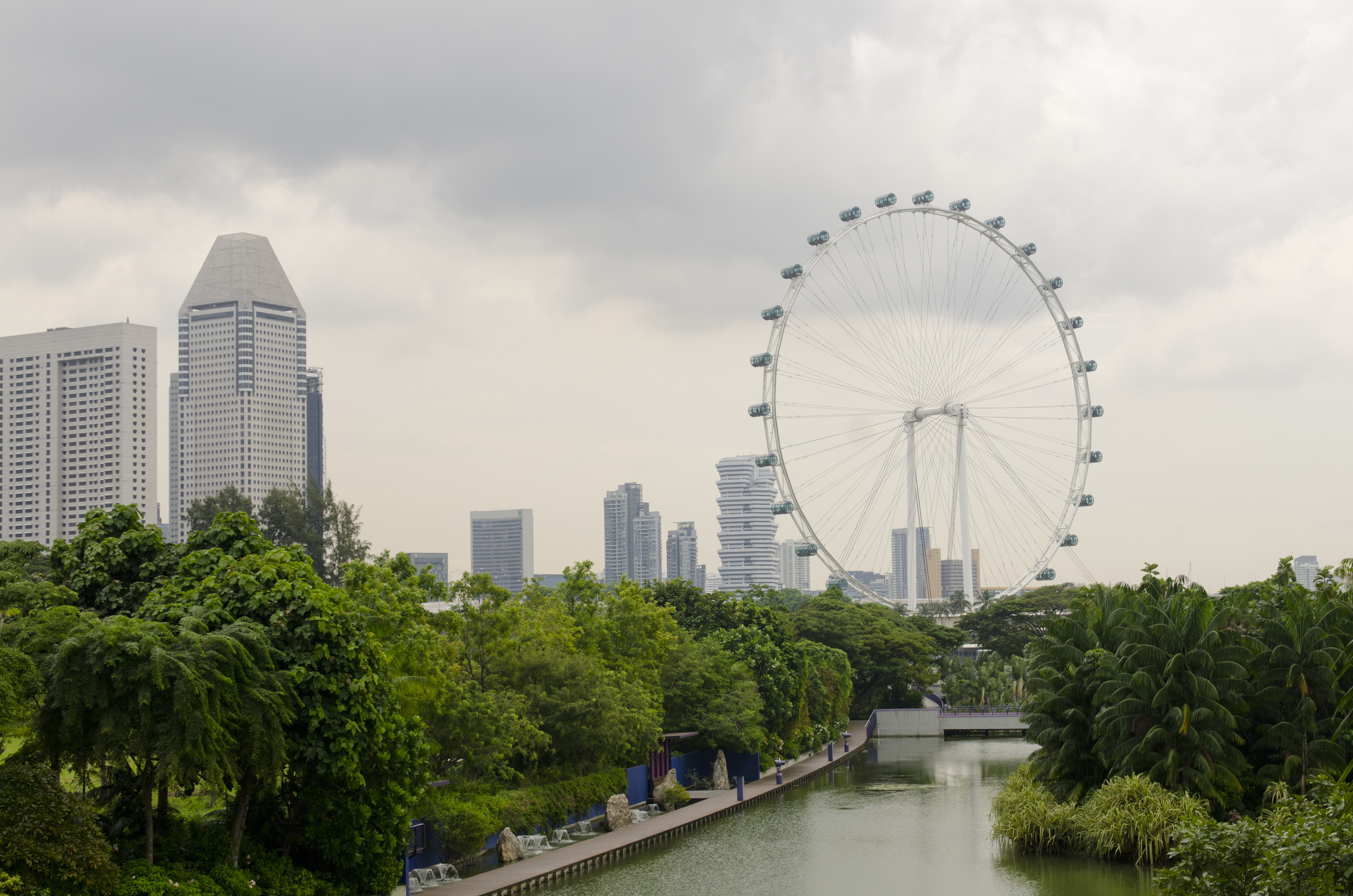 A glimpse of the Singapore Flyer from Gardens by the Bay