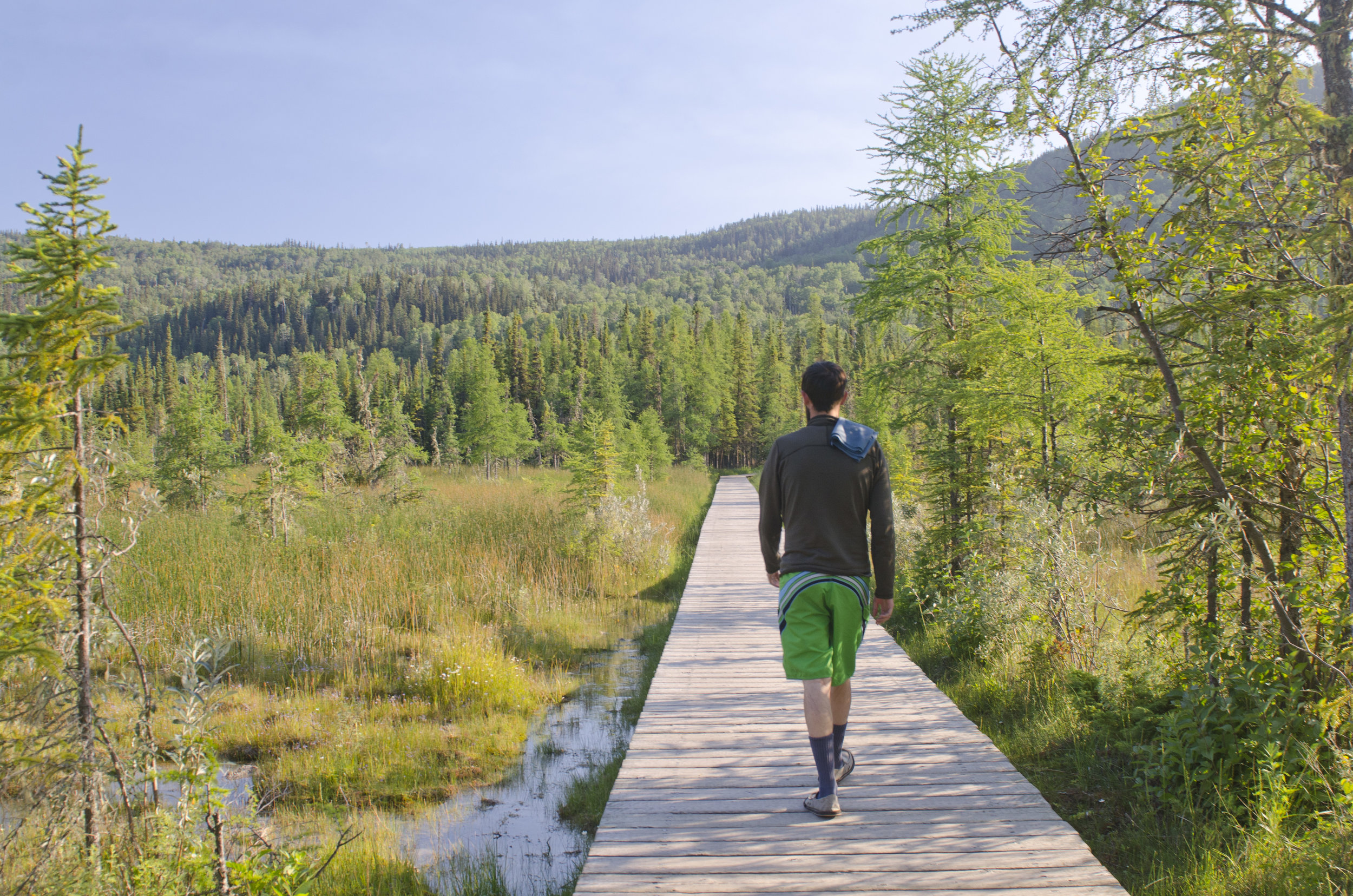 Boardwalk to the hot springs