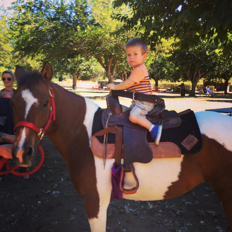Bates Nut Farm adventure a few weeks before Max was born