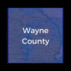WayneCounty.png