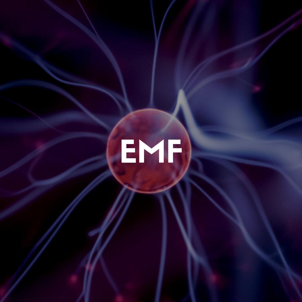 LS - Store Graphics - EMF.jpg
