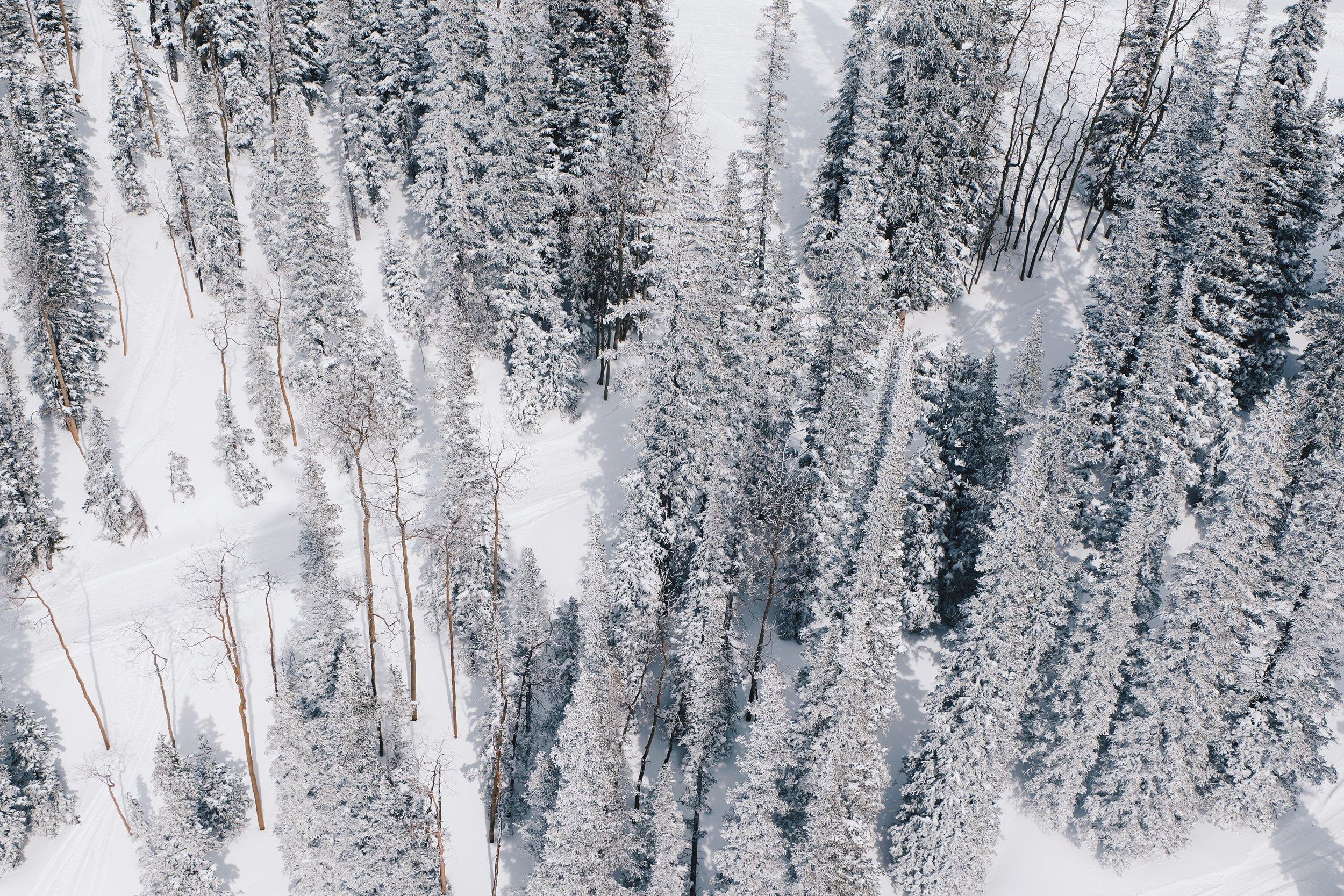 Ski Aspen, Travel Guide to Aspen
