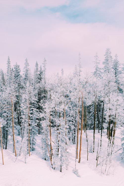 Dulci Edge, The Far & Near Aspen Travel Guide