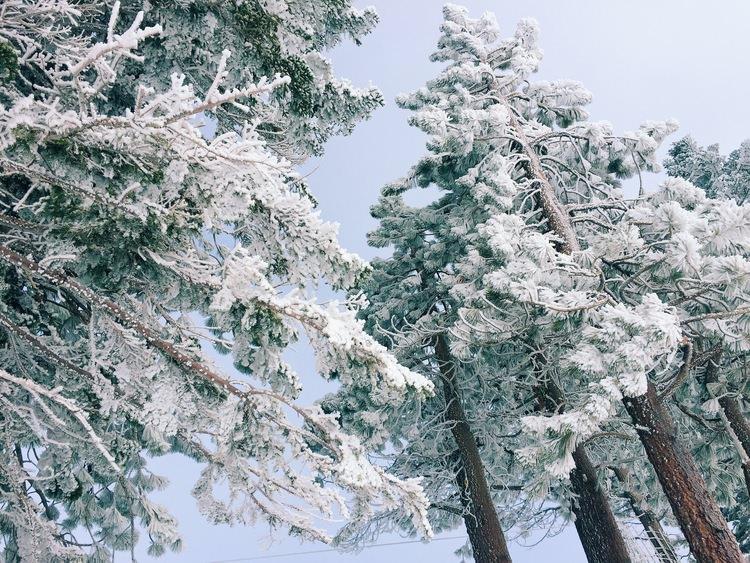 Dulci Edge, The Far & Near Travel Guide to Lake Tahoe