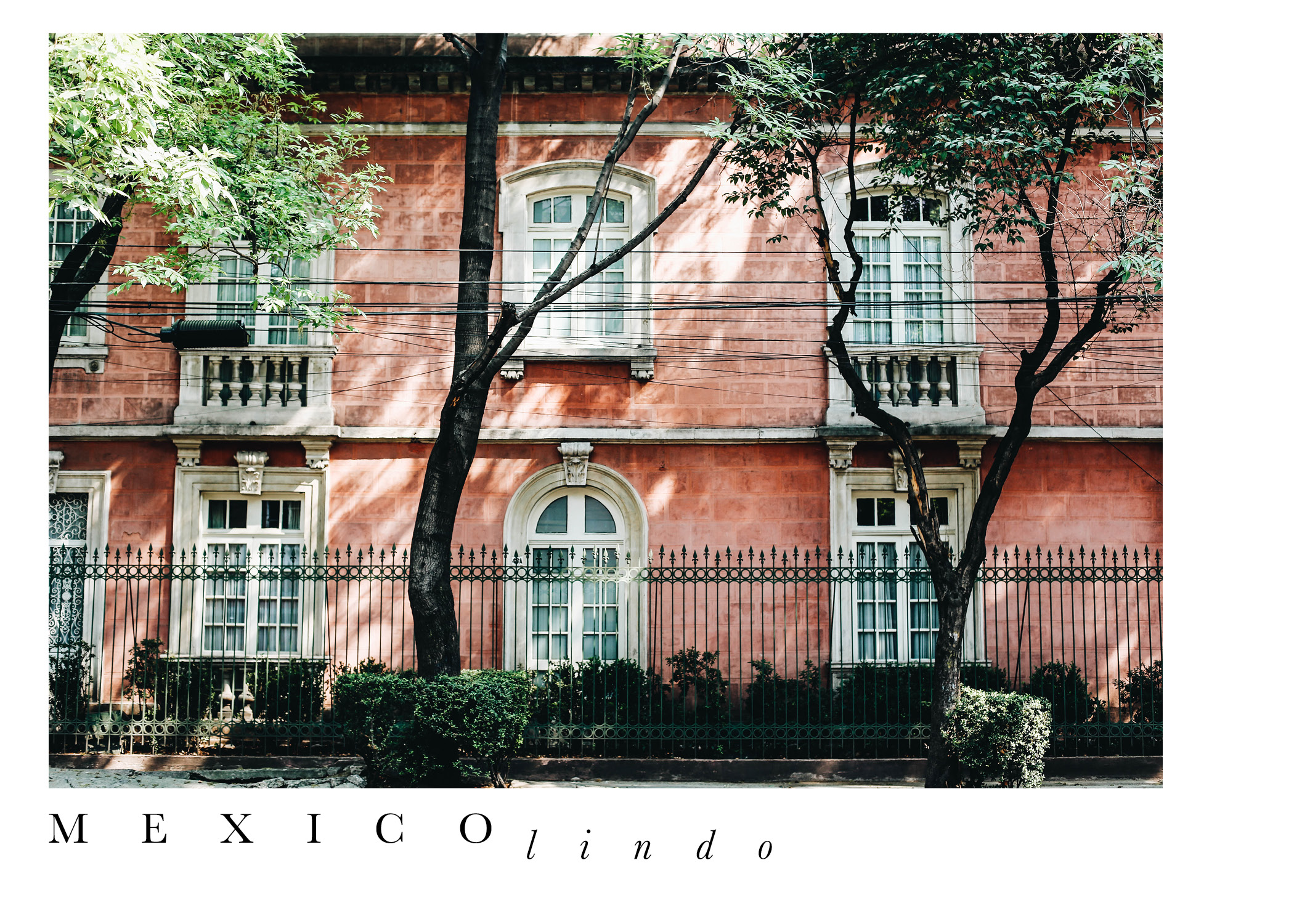 The Far & Near, Dulci Edge, Mexico City Travel Guide