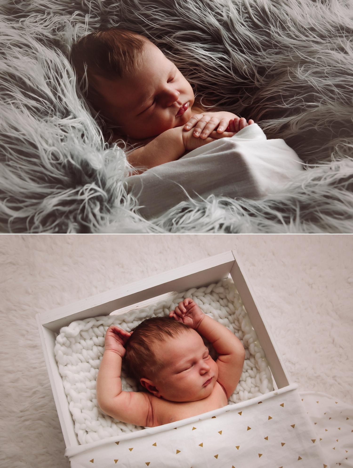 indianapolis-newborn-photos_0002.jpg