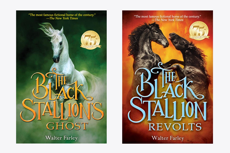 Black Stallion Web 2.jpg