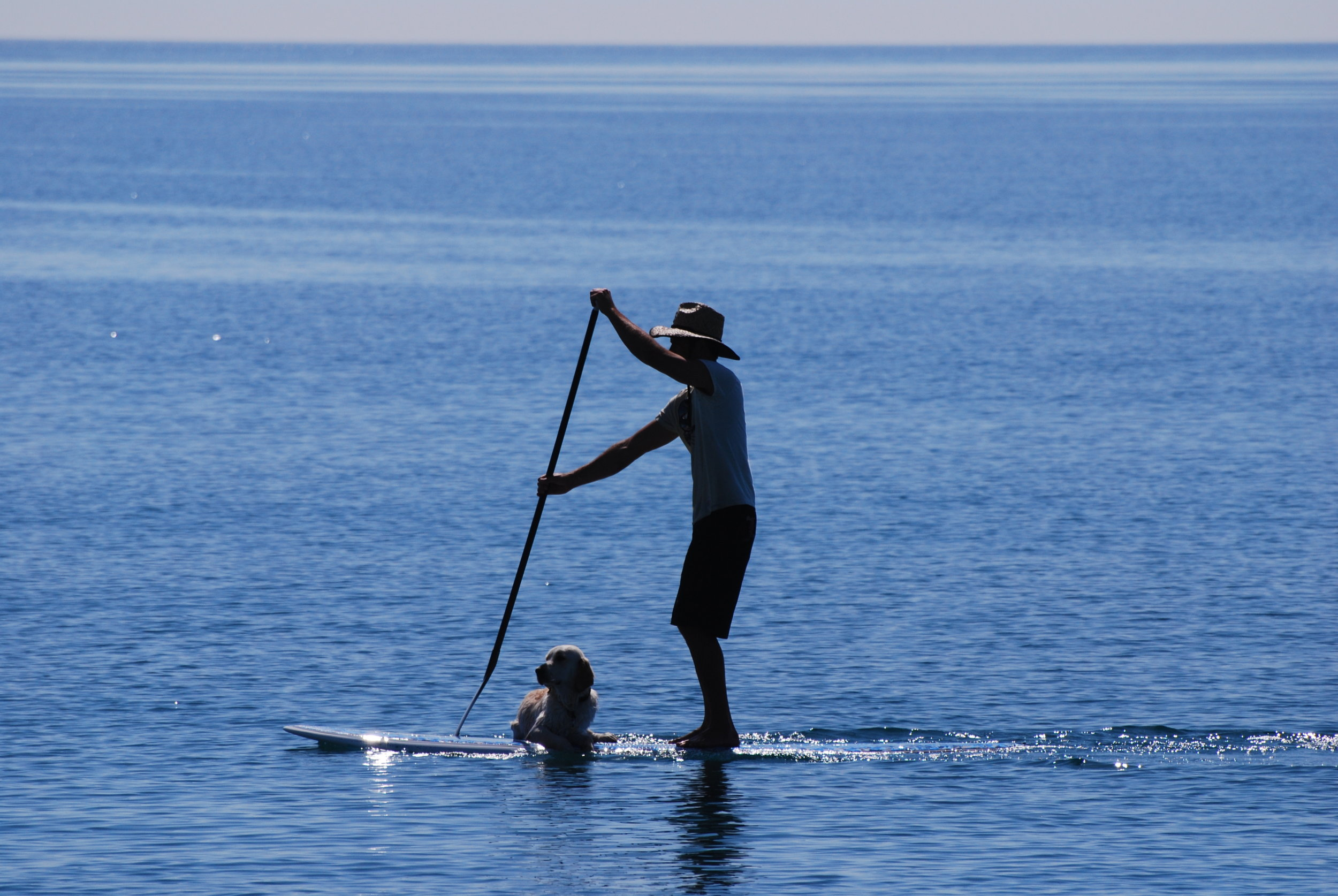 STAND UP PADDLE -