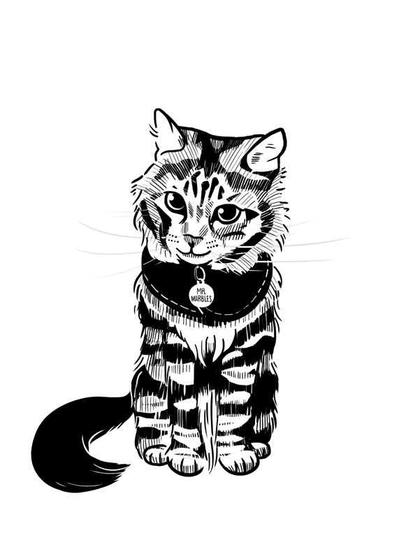 """Mr. Marbles 