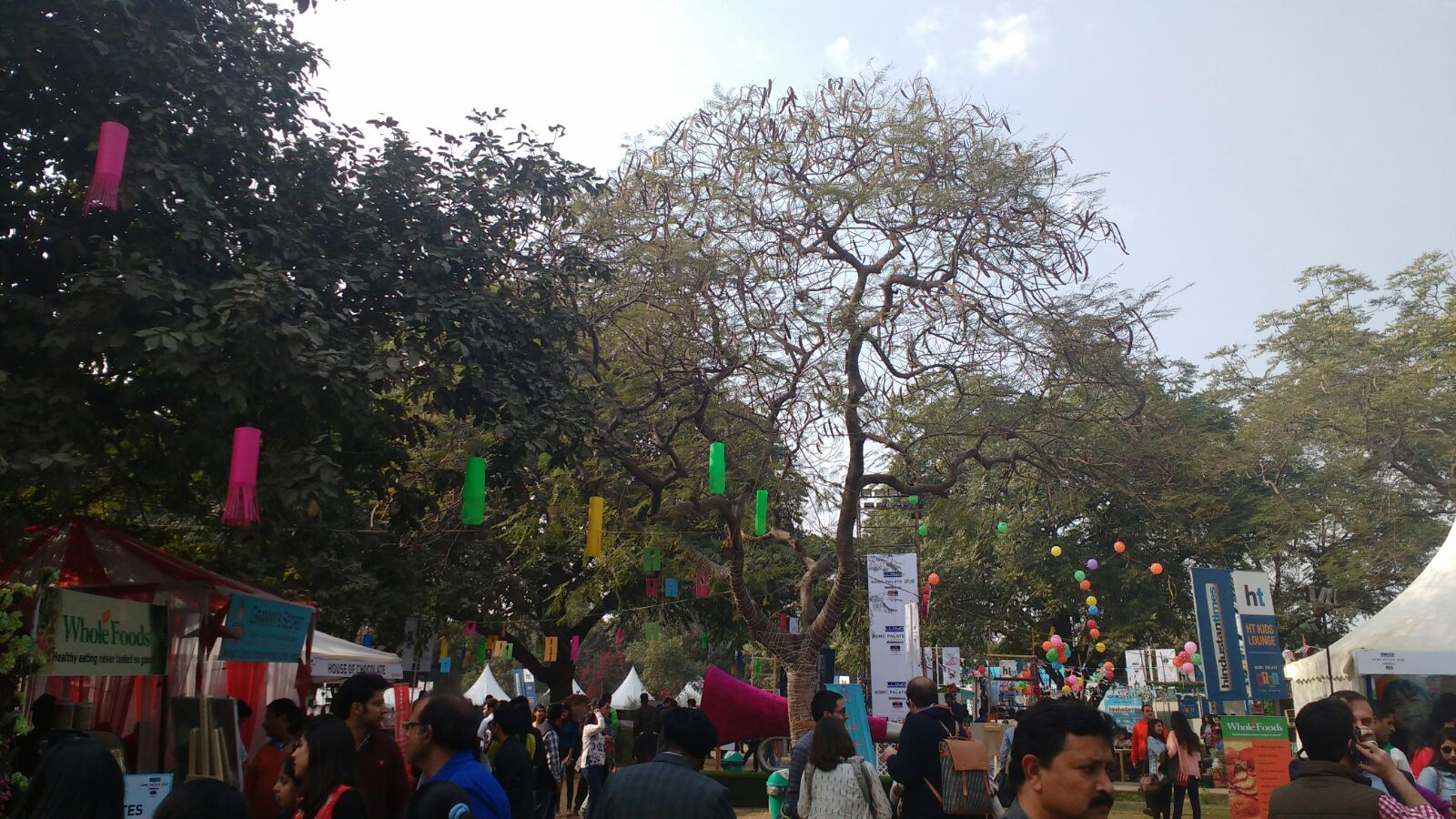Nehru Park Palate Mini Festival, Feb 2016