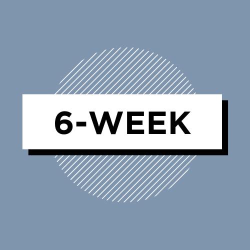 NiH Grant Review 6-week package