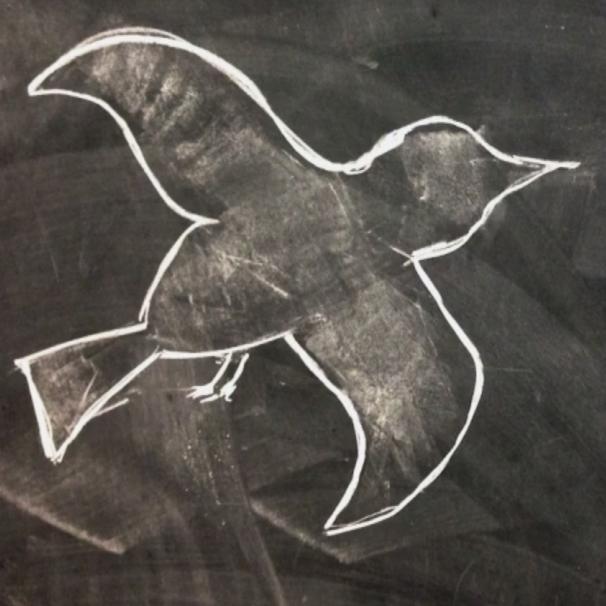 Dove Scouts (2014)