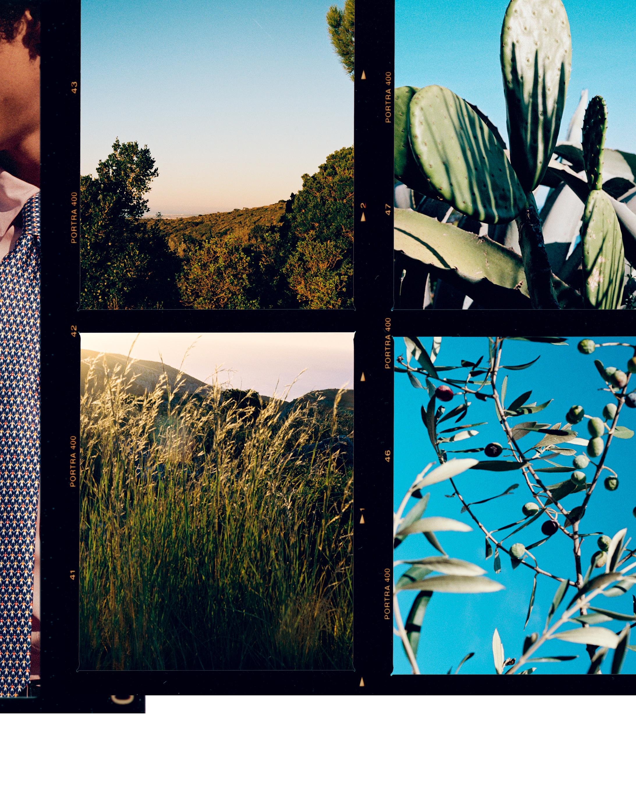 Cravates PE19_720.jpg