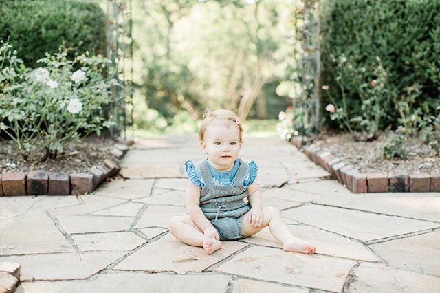 Lucy Clementine, how I love you. . . . . .  #13months #rosegardendesmoines #desmoinesfamily #desmoinesfamilyphotographer #desmoinesbabyphotographer #latesummer #darling #theartofslowliving #thehappynow #shootportraits #portraits #cutestbaby #cutesttoddler #growinguplucy #lucyclementine #humansofjoy #seekthesimplicity #habitandhome