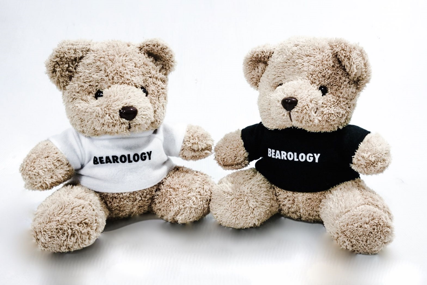 BEAROLOGY Teddy Bear SK Giveaway.jpg