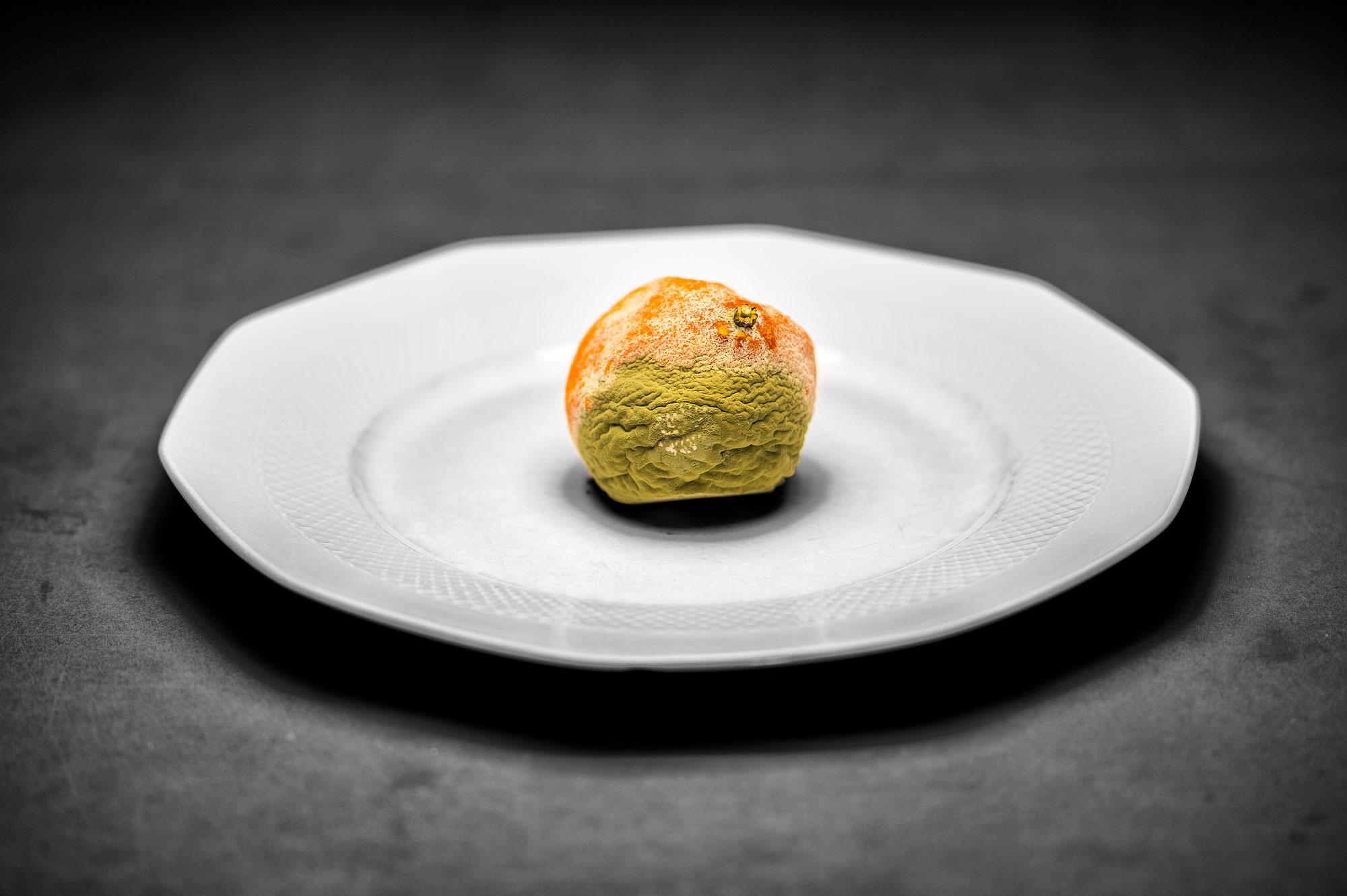 citrus reticulata 2