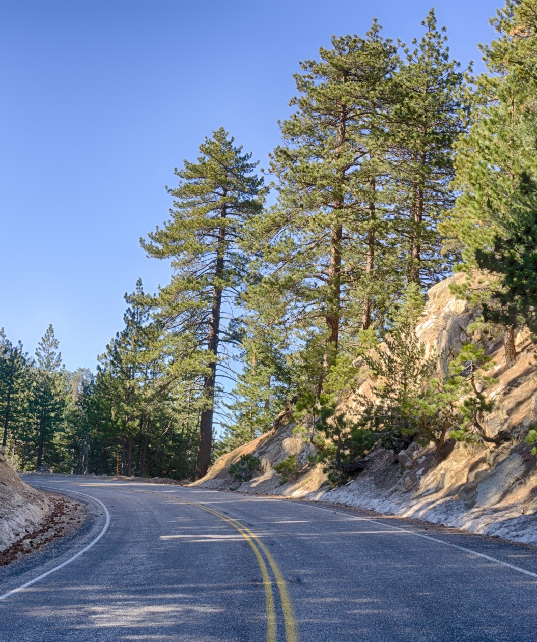 mountain-forest-road (1).jpg