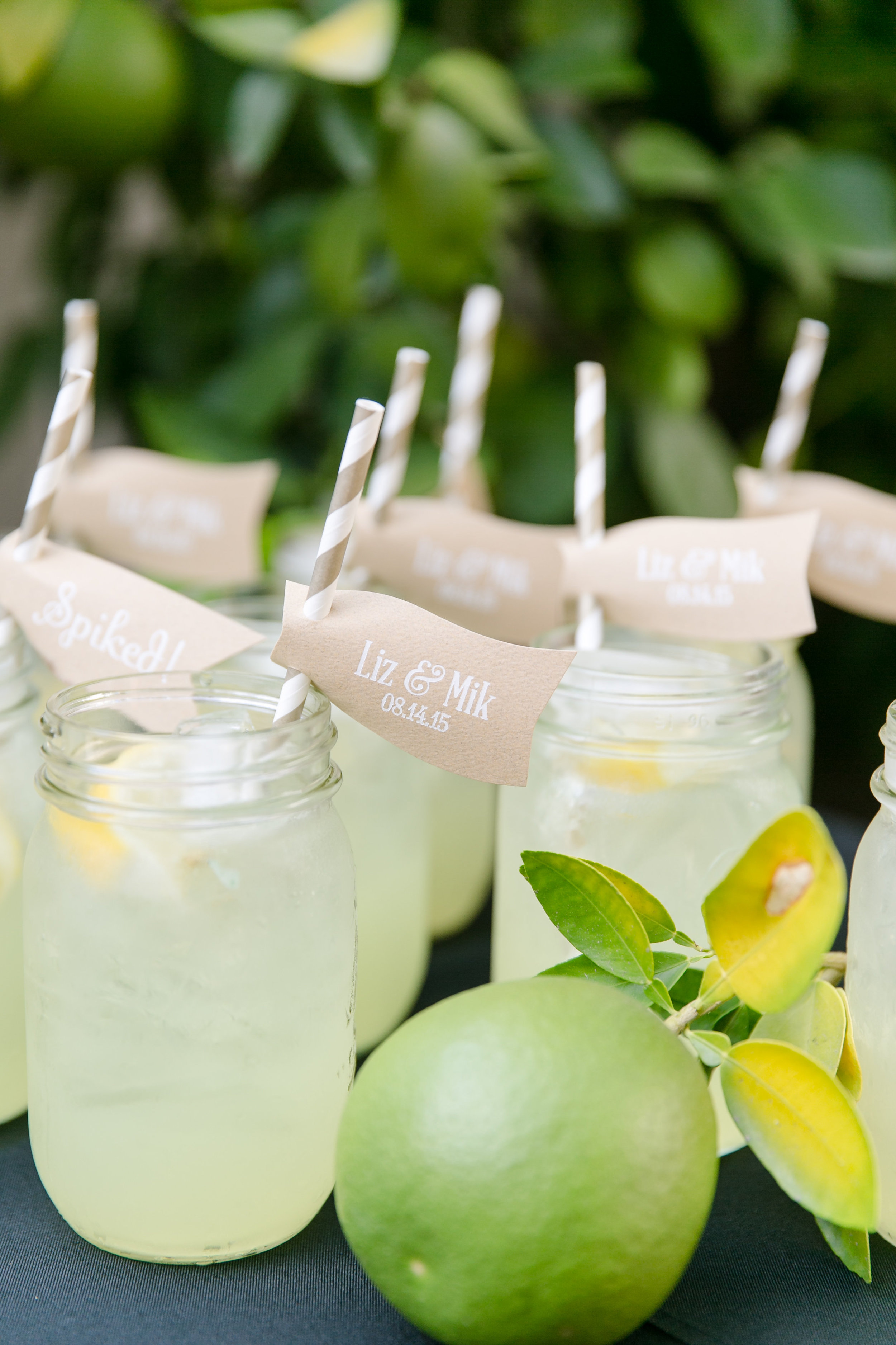 Rustic Lemonade Welcome Cocktail | Michelle Garibay Events