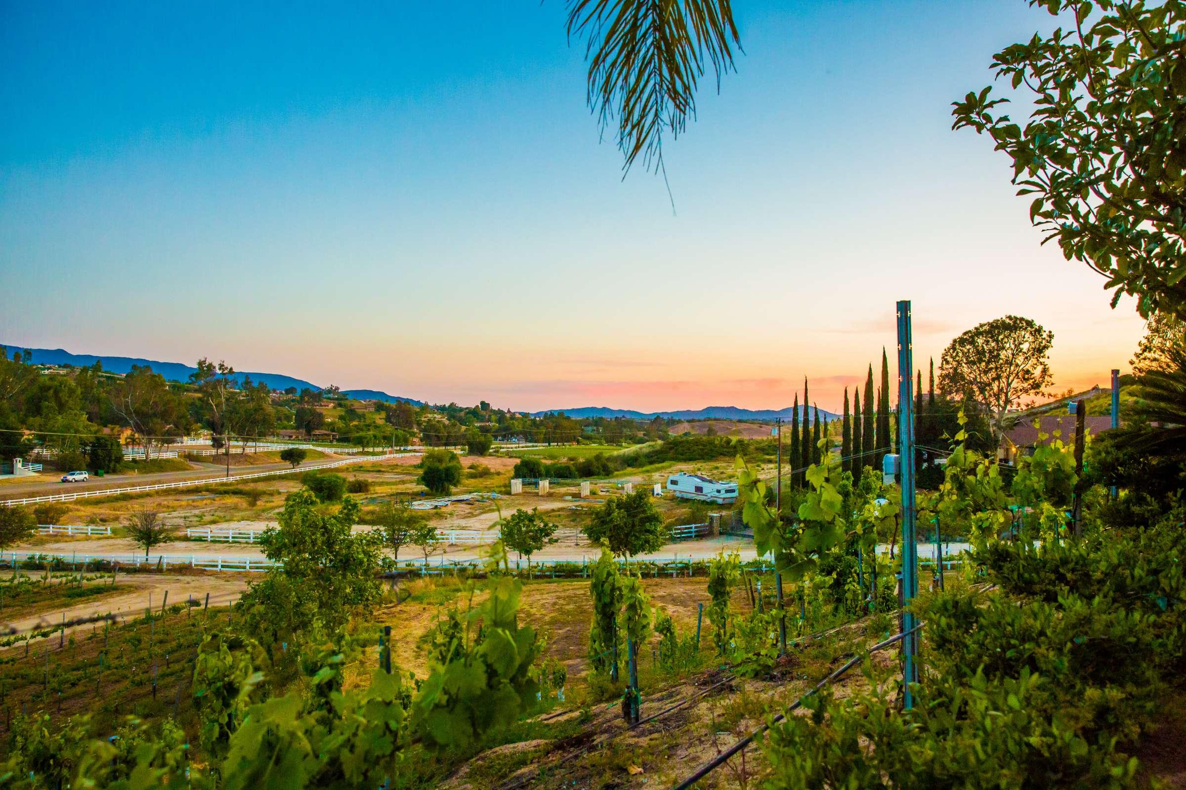 Spanish-inspired Reception | True Photography | Michelle Garibay Events | Masia de la Vinya