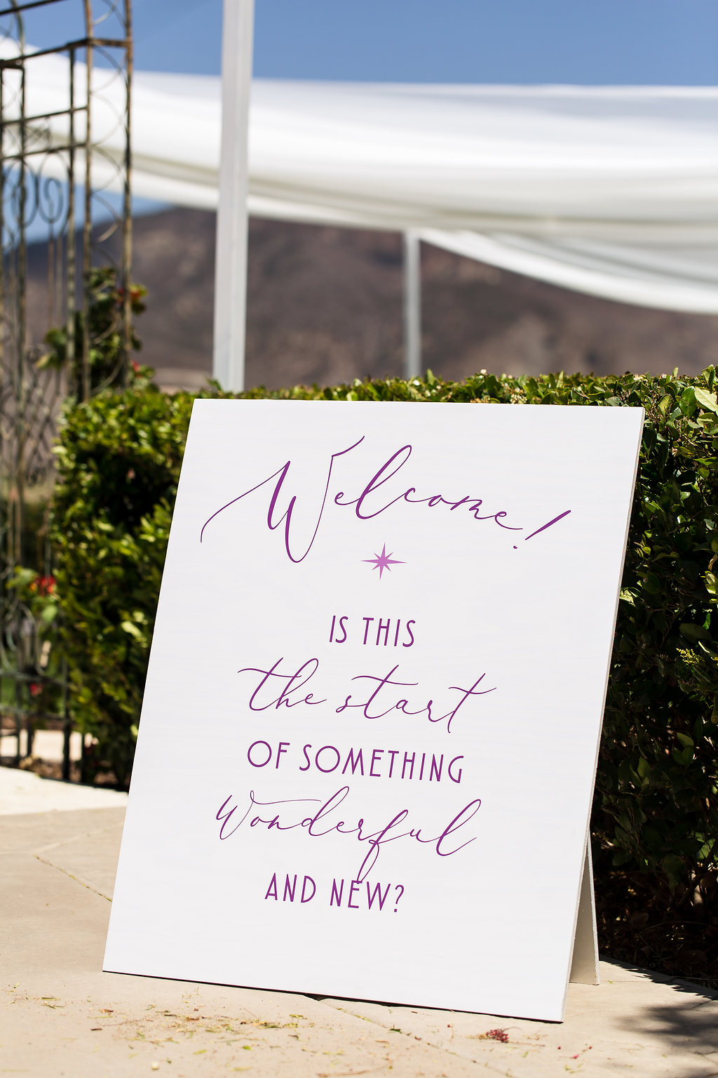 Brian Leahy Photo | Michelle Garibay Events | Luxury Temecula Wedding | La La Land Purple Wedding