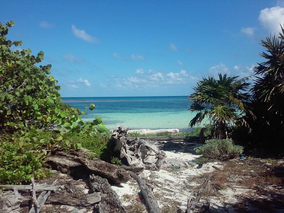 beach-2223009_960_720.jpg
