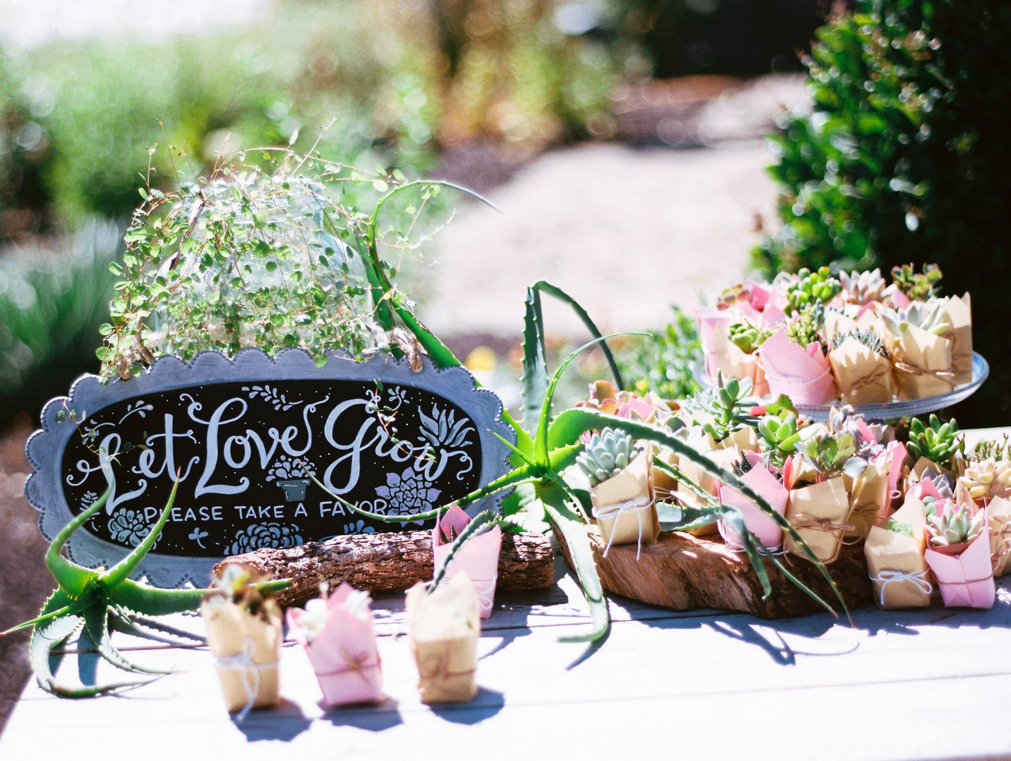 My cousin's beautiful favor table.  Photo credit: Jessica Garmon