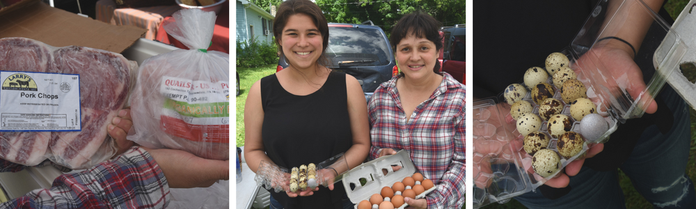 Quails R Us Plus!   A family farm offering poultry, game, lamb, eggs, rabbit, guinea, turkey and more!