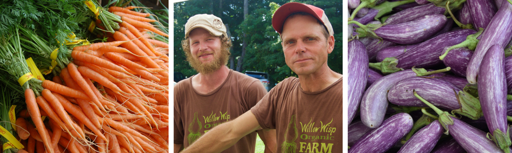 Willow Wisp Organic Farm   Diverse mix of certified organic vegetables, herbs, and cut flowers.