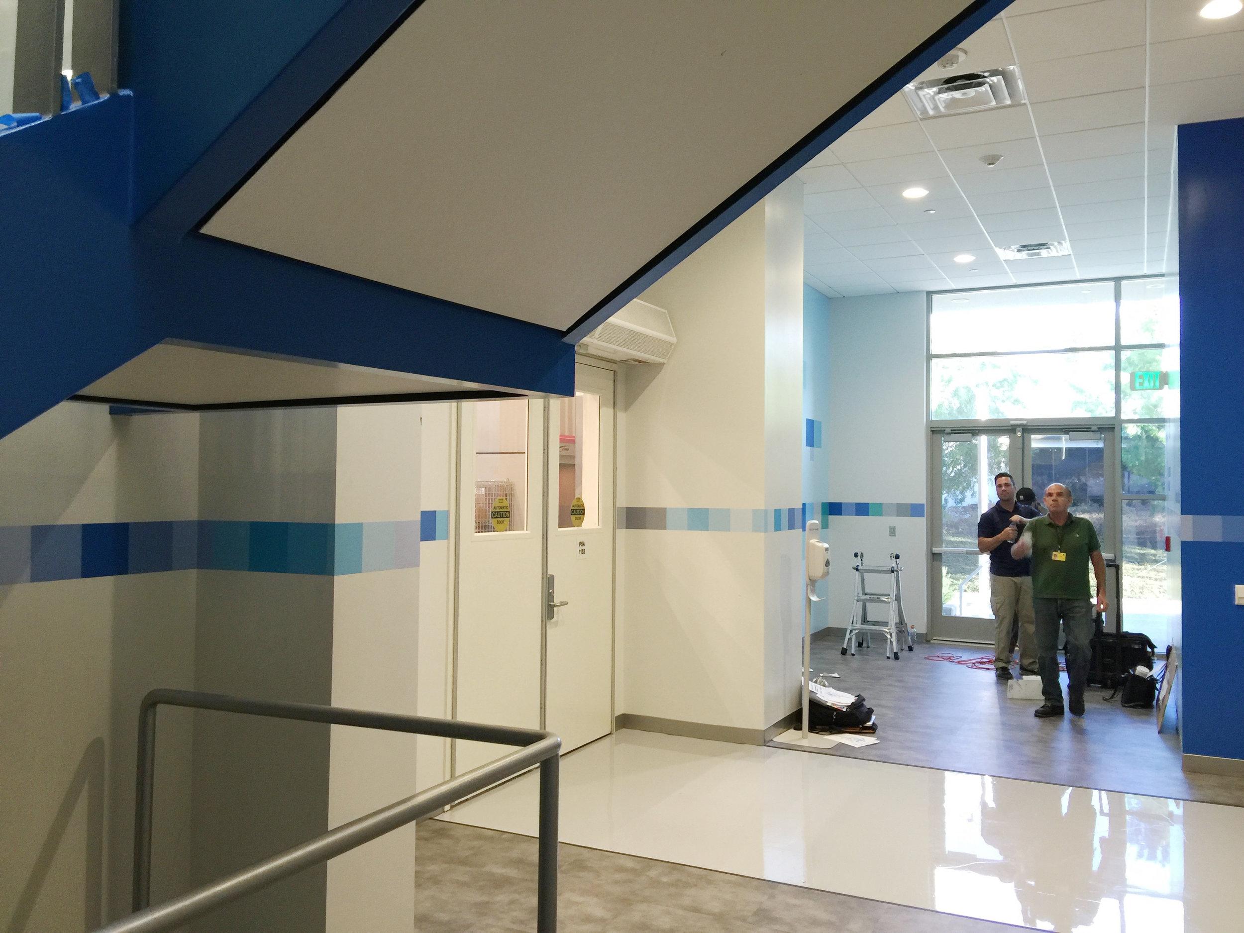 amgen lobby 42 design4.jpg