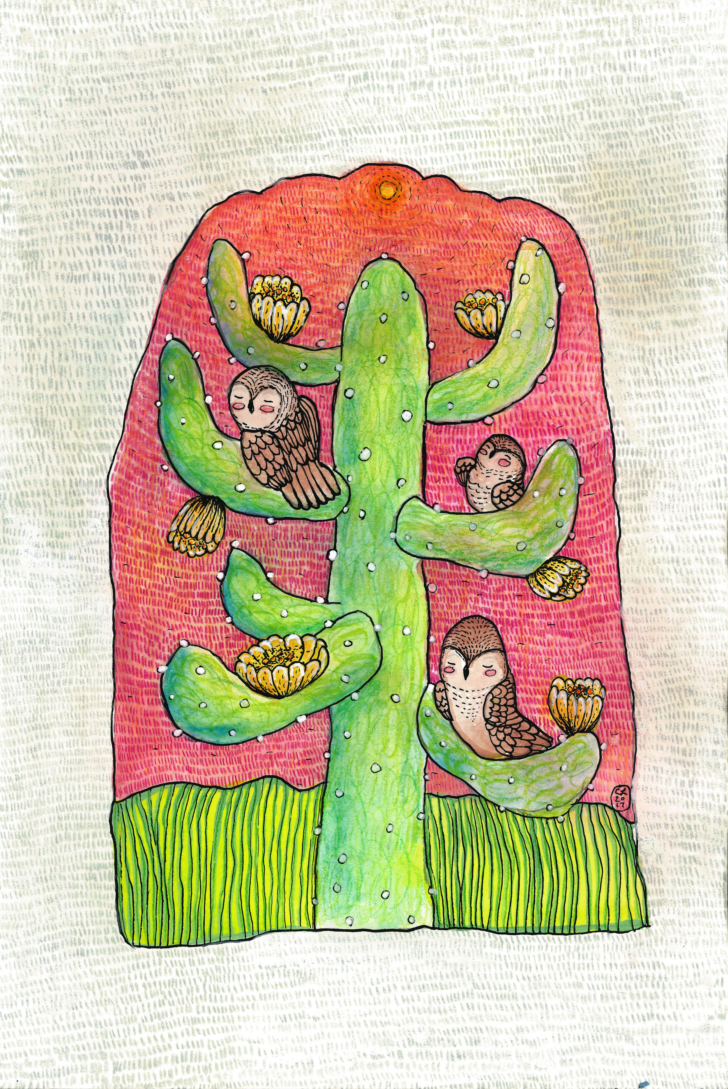 owl cactus drawing.jpg